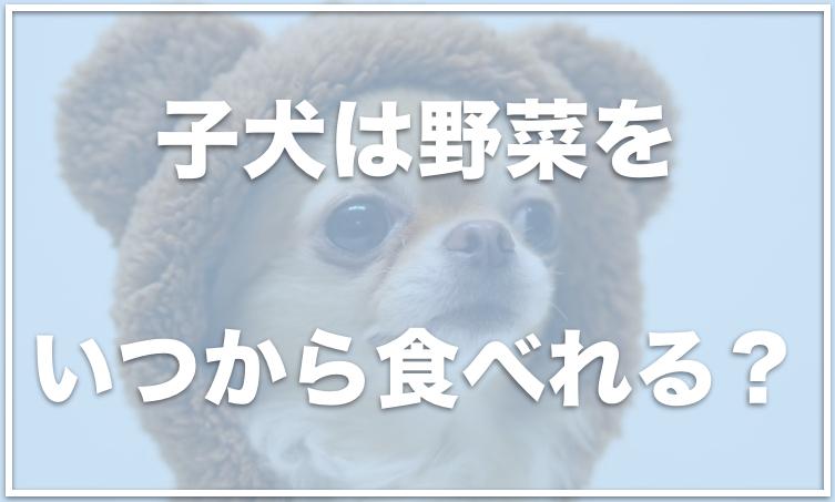 野菜 られる が 犬 食べ