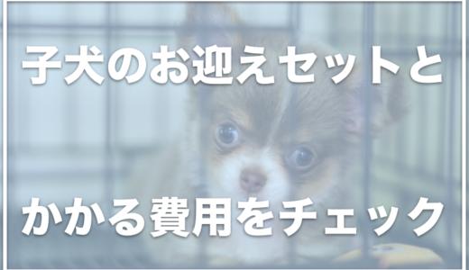 子犬のお迎えセットはこの7つ!犬を飼うための準備費用はいくらくらいかかる?