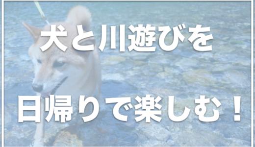 川遊びを関東でできる場所は?日帰りで犬と川遊びするならココ!
