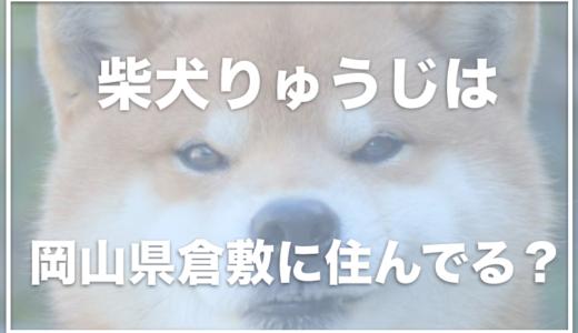 柴犬りゅうじは岡山県倉敷に住んでる?お家はお店のすぐそば?写真集やカレンダーが可愛い!