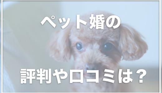 ペット婚の口コミに「犬好きな人との出会いなら」と評判多数!愛犬を愛してくれる異性の見つけ方