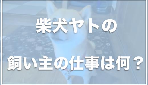 柴犬ヤト(ヤトと小太郎と子猫)の飼い主の顔は?仕事はなんなの?
