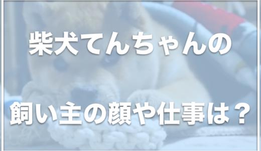 柴犬てんちゃんは京都在住!飼い主の顔や仕事は何?病気で手術したって本当?