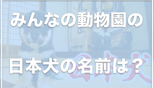 みんなの動物園の日本犬がかわいい!藤岡弘がつけた日本犬の名前をチェック!